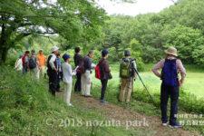 野津田公園 野鳥観察会