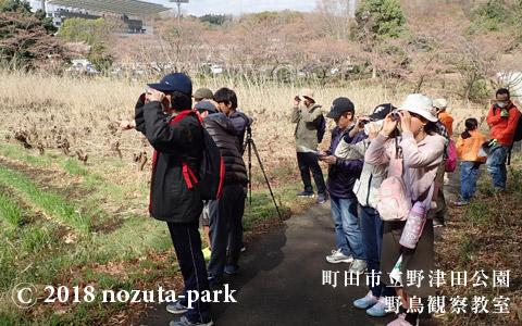 野津田公園 野鳥観察教室
