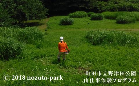 野津田公園山仕事体験プログラム