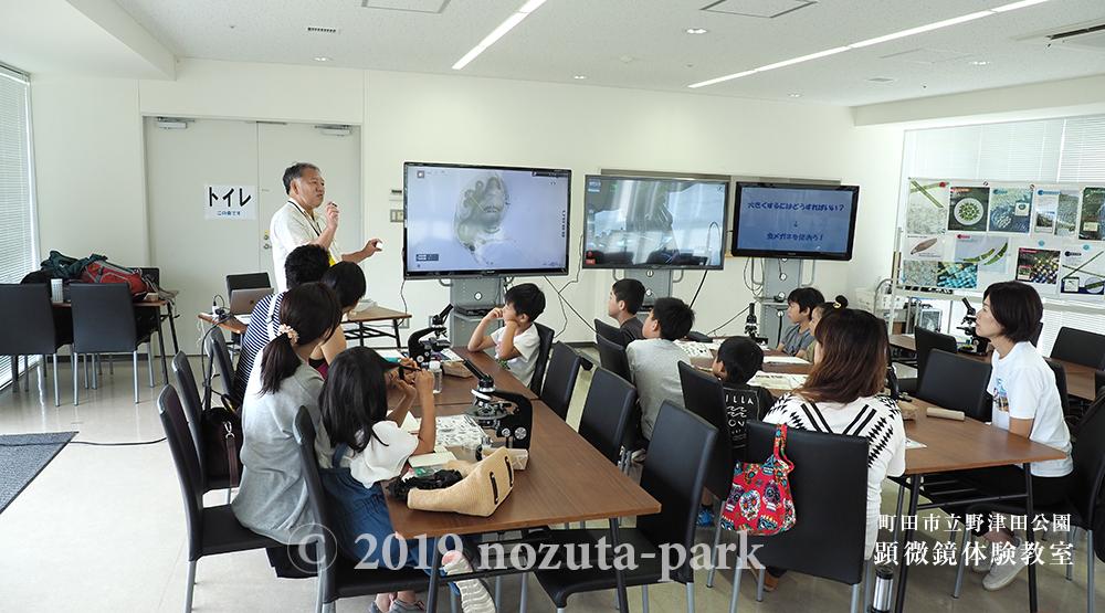 顕微鏡体験教室