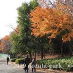 野津田公園紅葉